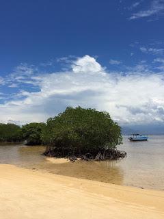 バリ島埋め立て計画