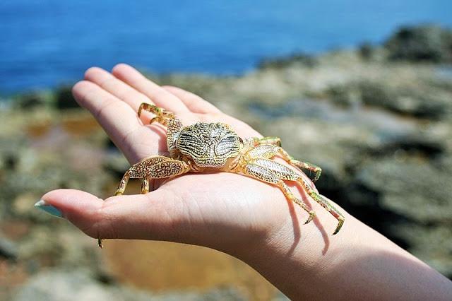 レンボンガン島デビルズティアーズとチュニガン島内観光ツアー