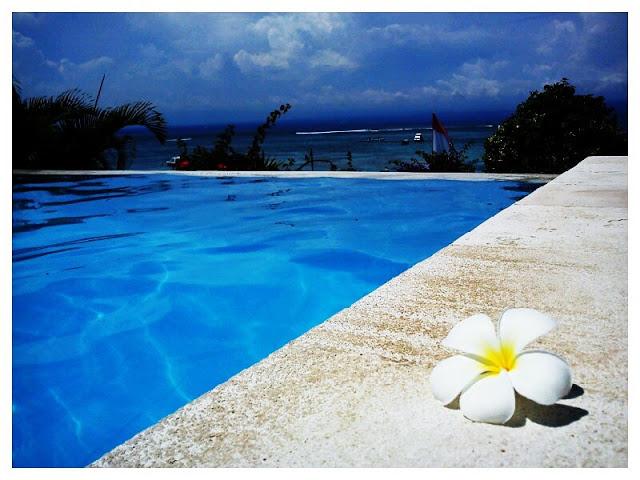 バリ島とレンボンガン島のブログ