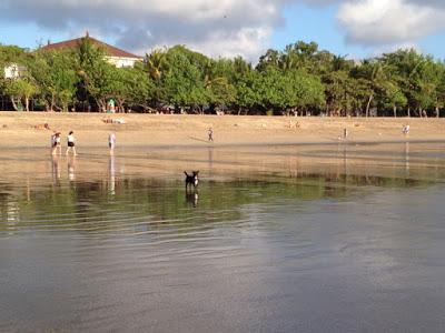 クタビーチが人気の理由
