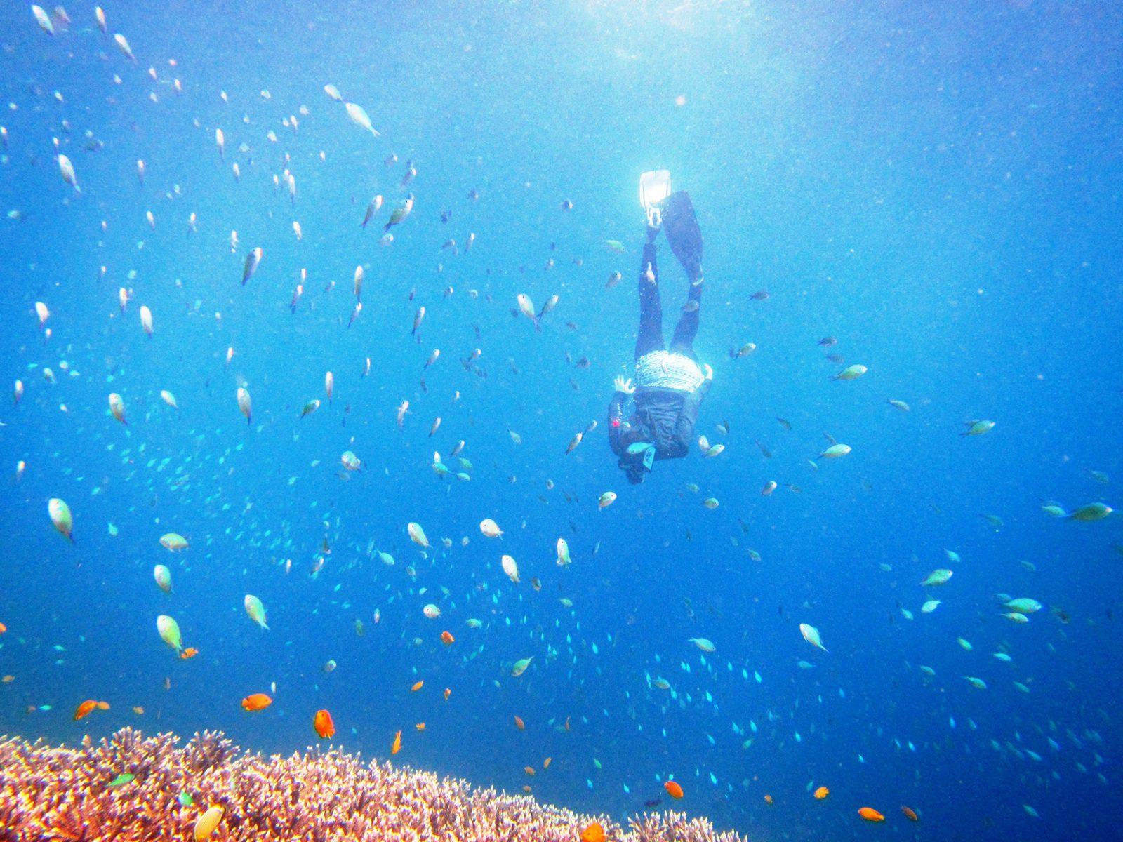 ペニダ島でシュノーケリング
