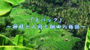 「完全保存版」バリ島の世界遺産・スバックを知る!~神様と人間と棚田の物語~