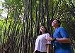バリ島ブサキ寺院ツアー、衣装体験