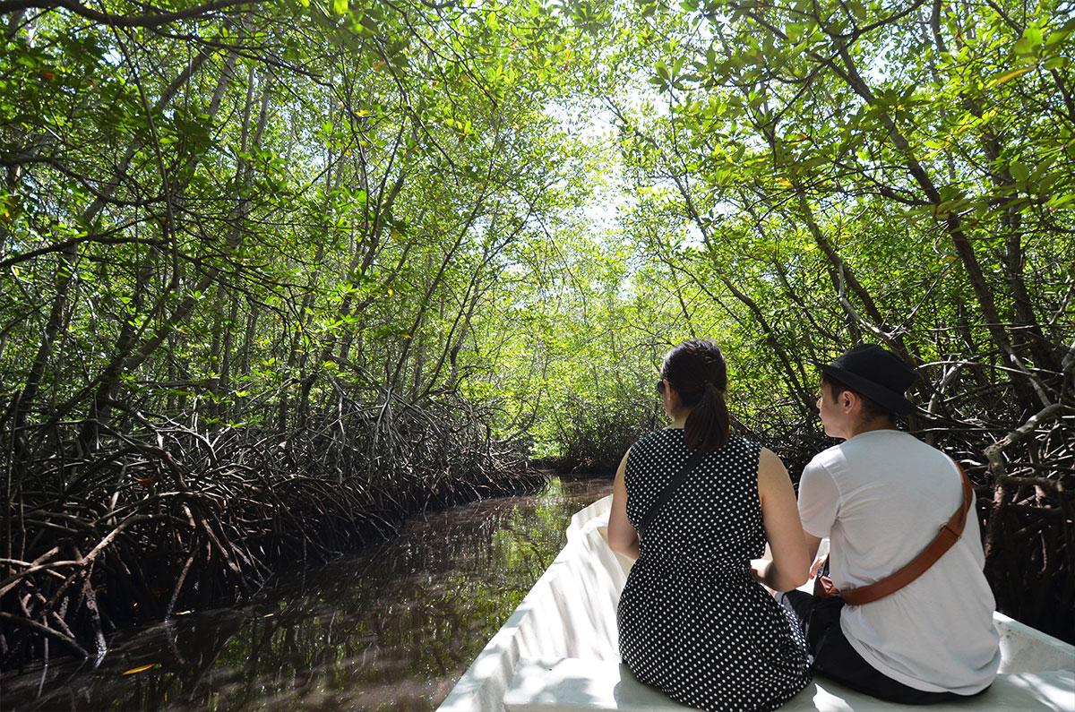 バリ島、レンボンガン島ツアー学割