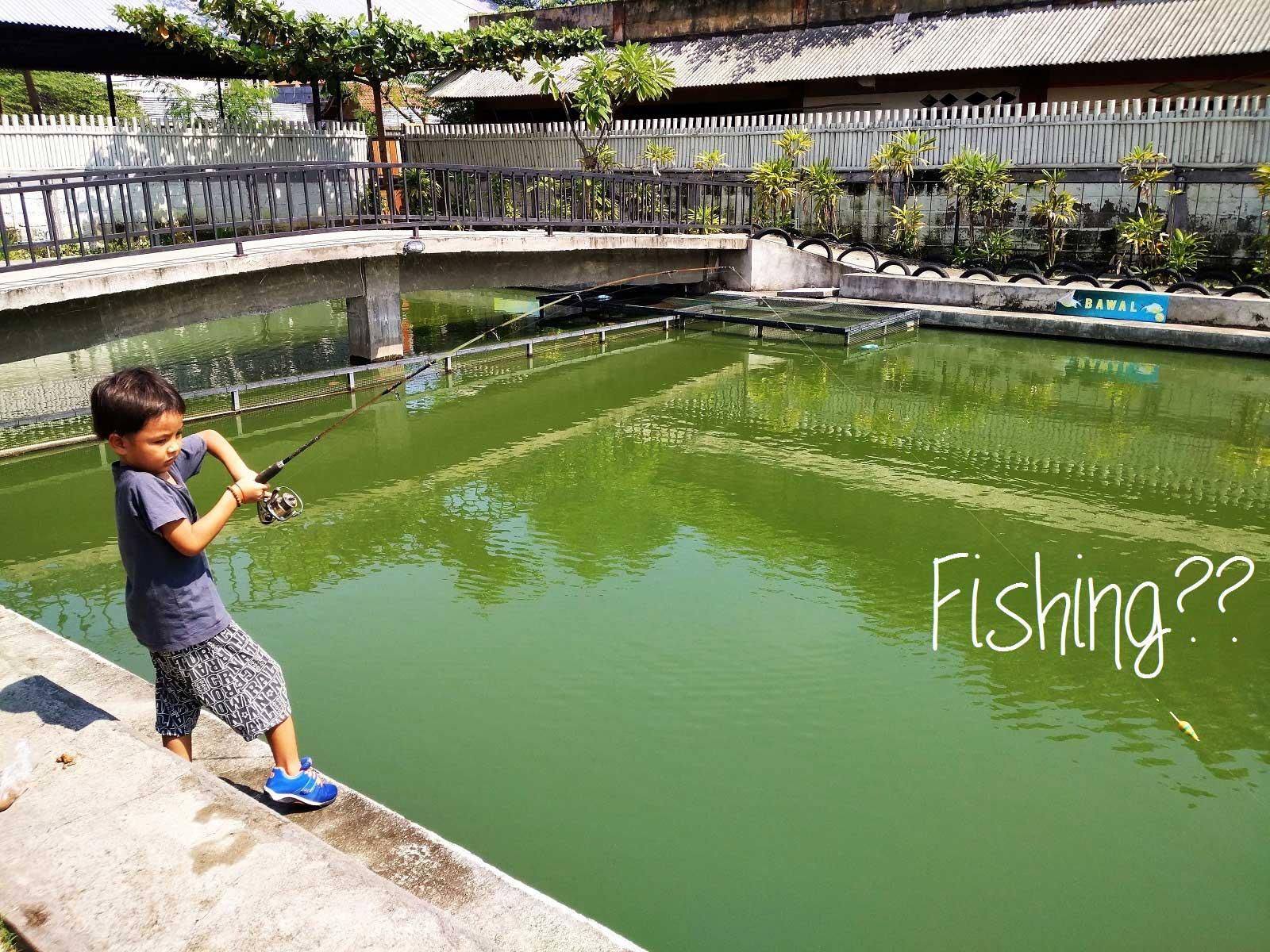 バリ島在住の生活情報と釣り堀