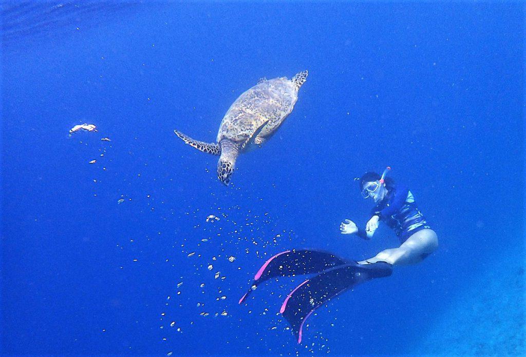 ロンボク島のギリ島