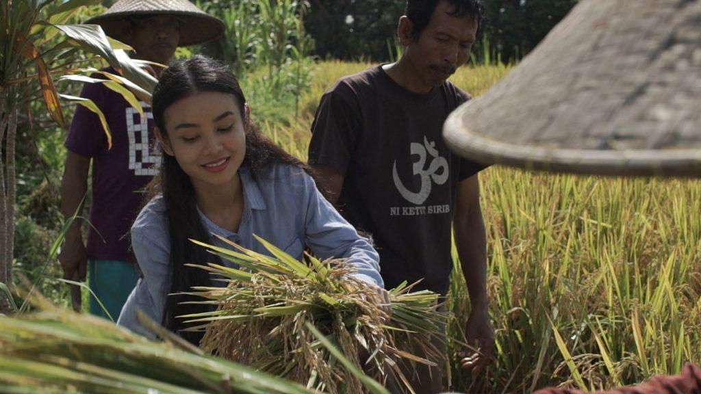農業体験バリ島