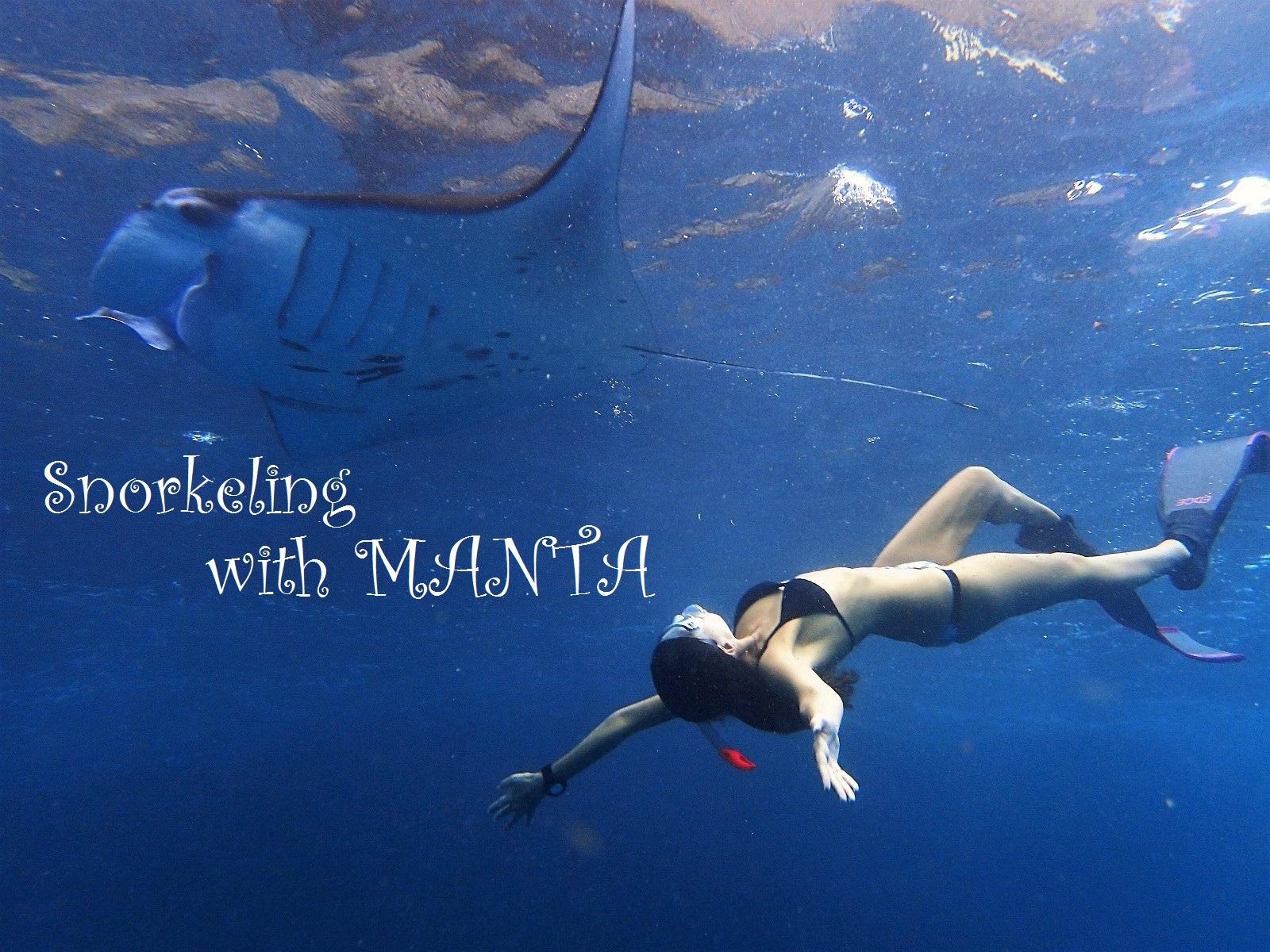 バリ島発マンタと泳ぐシュノーケリングツアー