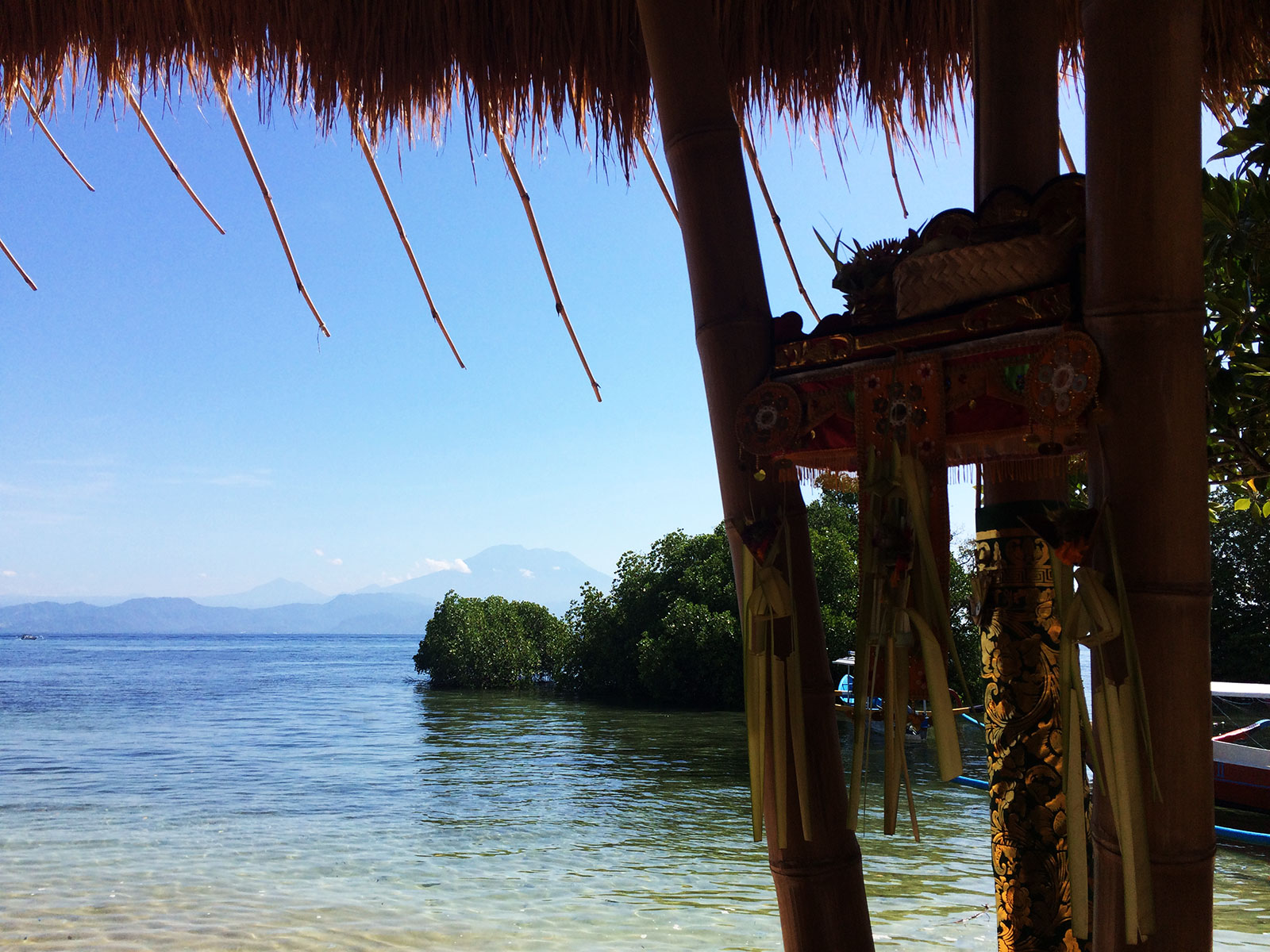レンボンガン島,マングローブ