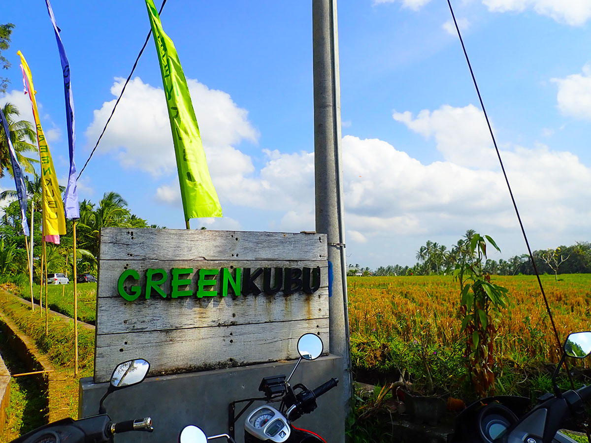 greenkubu01