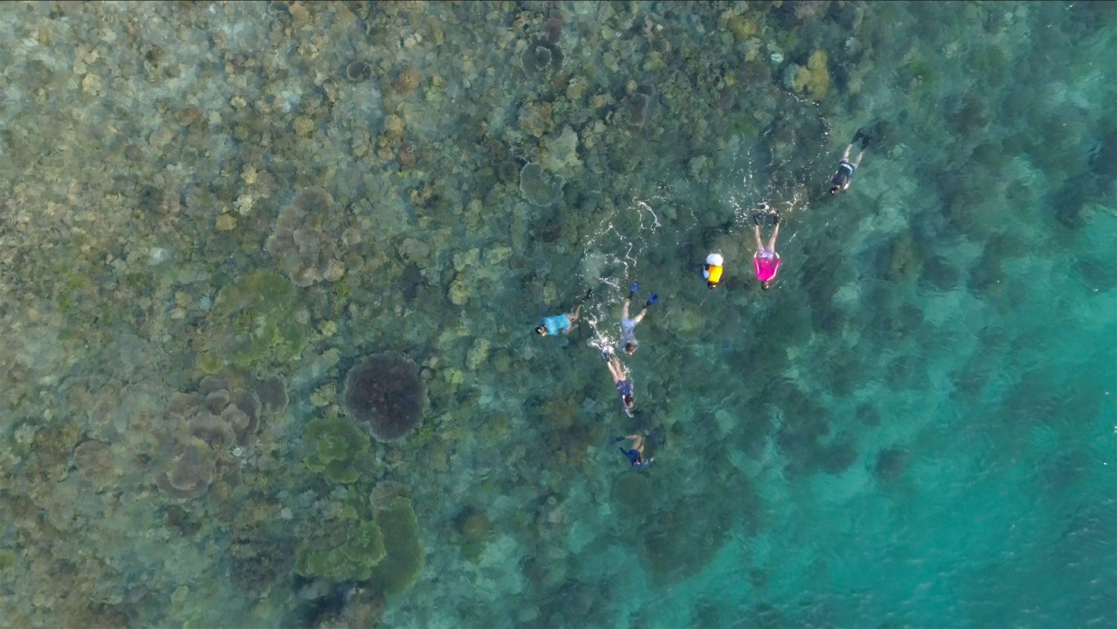 explore-komodo-snorkeling