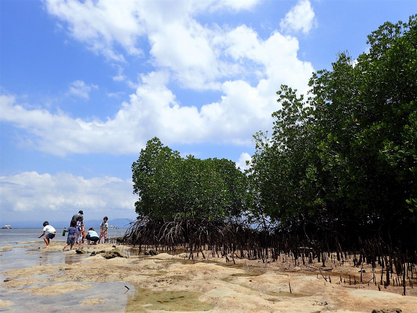 レンボンガン島家族旅行