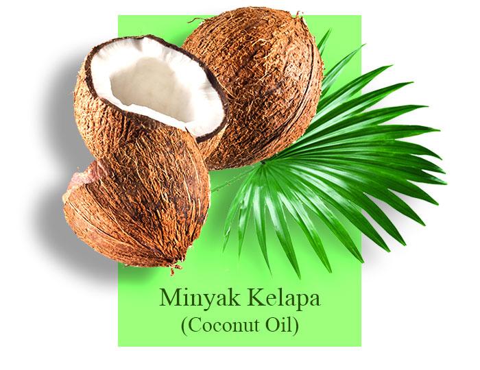 kutus-kutus-coconutsoil