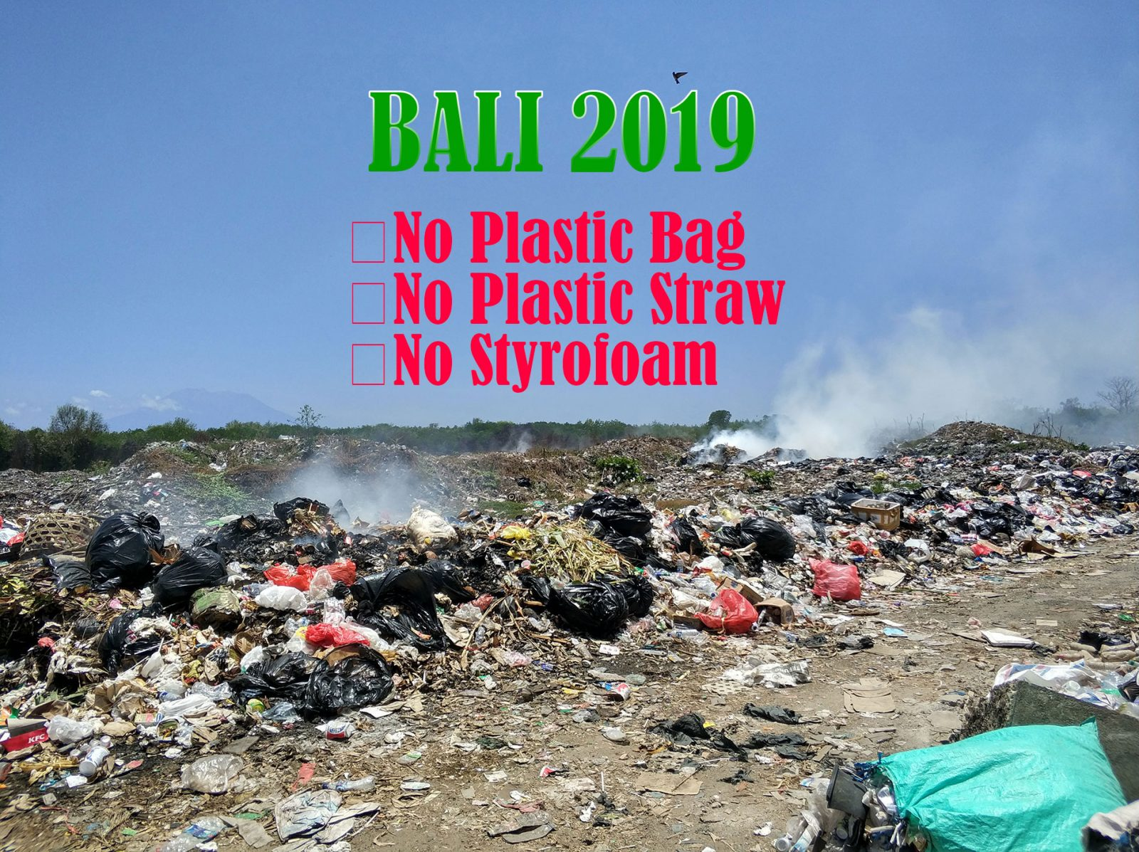 plastic-ban-bali2019