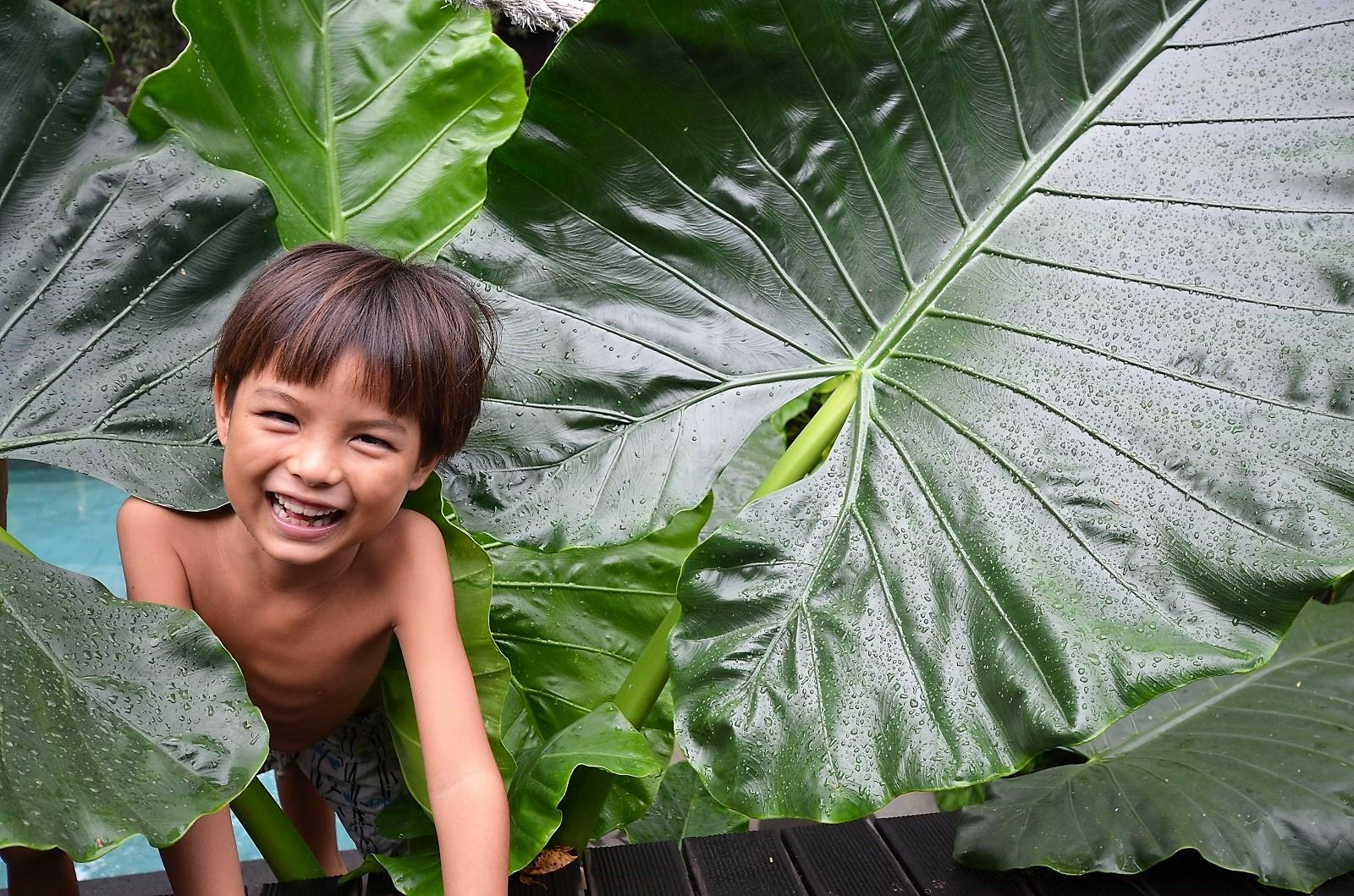 【バリ島西部】雨季のザ・ムンジャンガン:The Menjangan