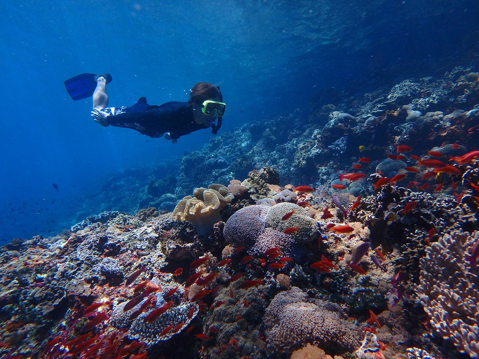 snorkeling-baliclub-tour