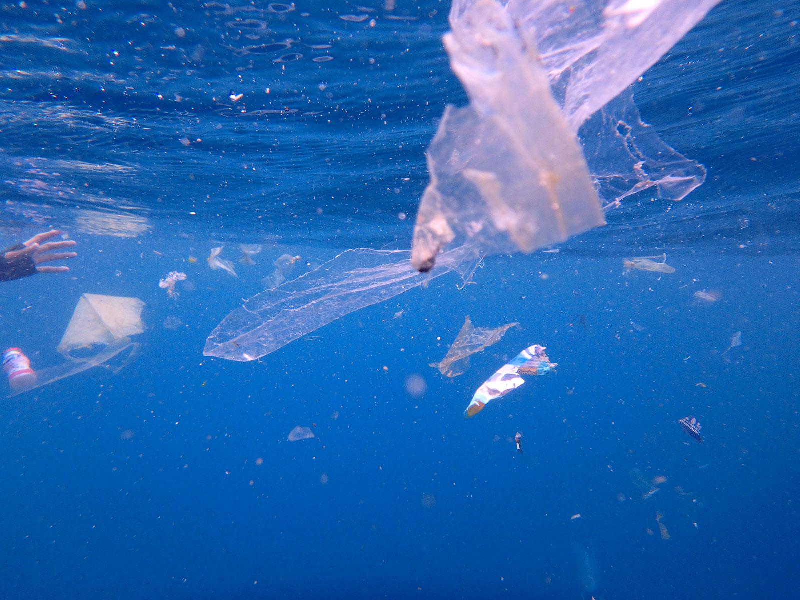 no-plastic-in-our-ocean