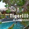 【レンボンガン島 女子旅】Tiger lillysに泊まってみた!