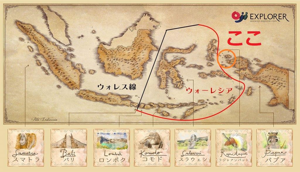インドネシアのラジャアンパットの地図