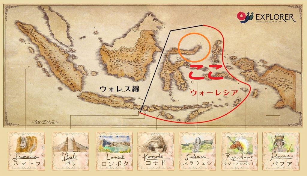 インドネシアのウォーレシアを代表するスラウェシ島の地図