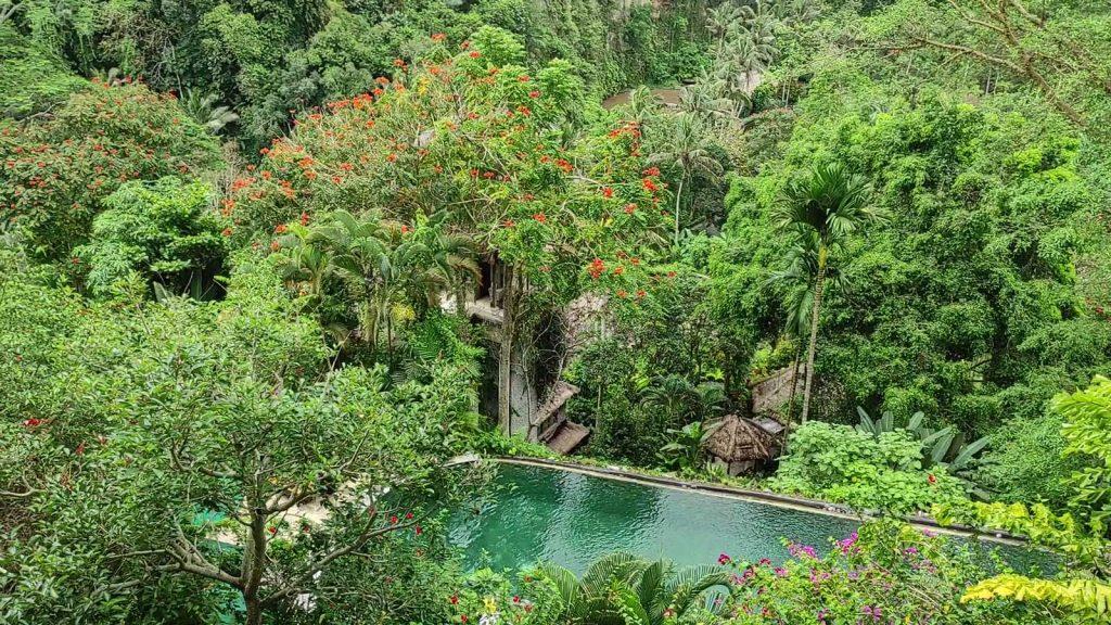 ロイヤルピタマハのプール