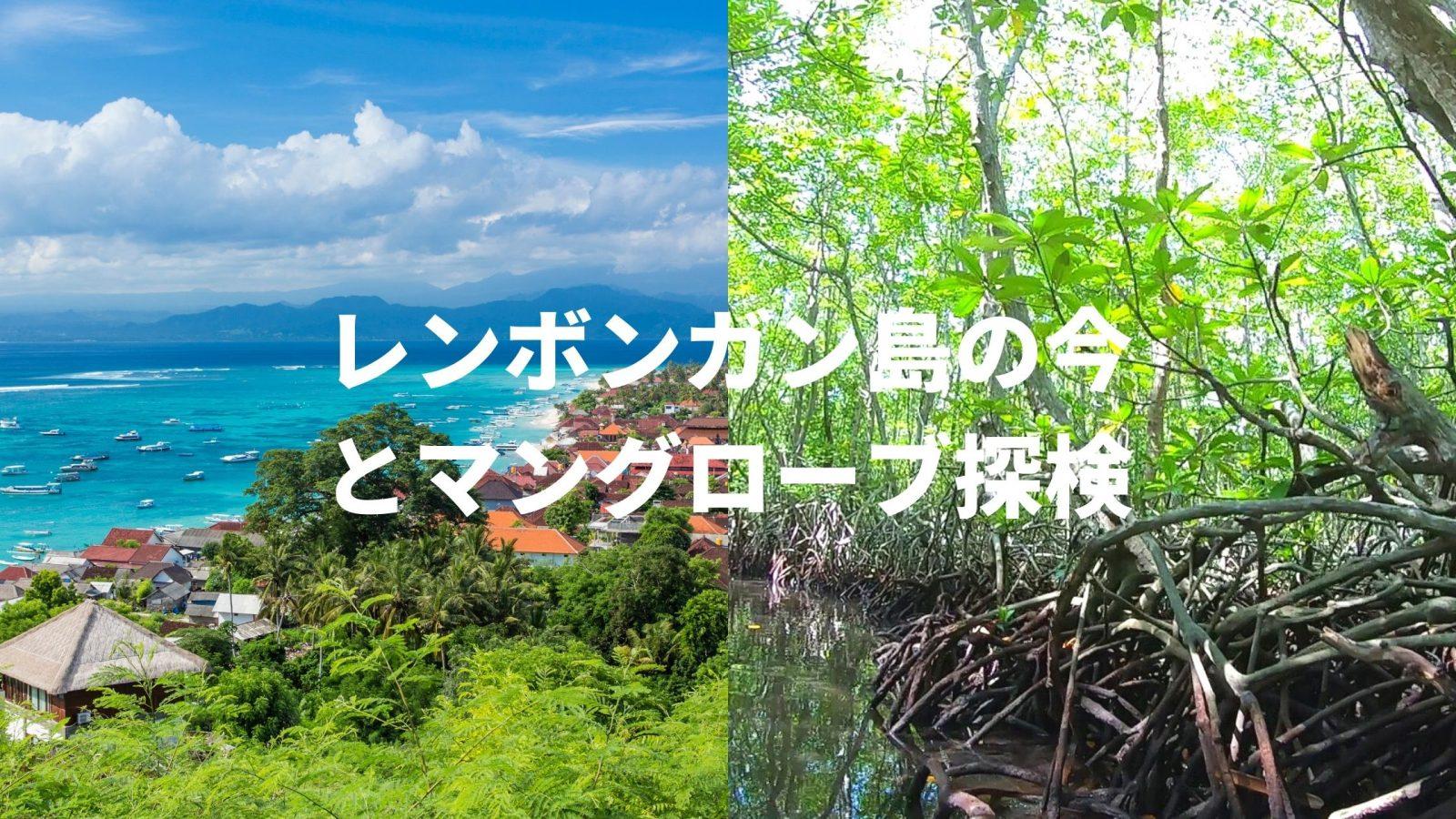 レンボンガン島オンラインツアー