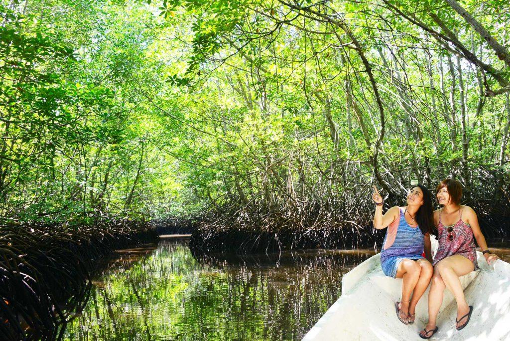 レンボンガン島のマングローブを小舟で探検