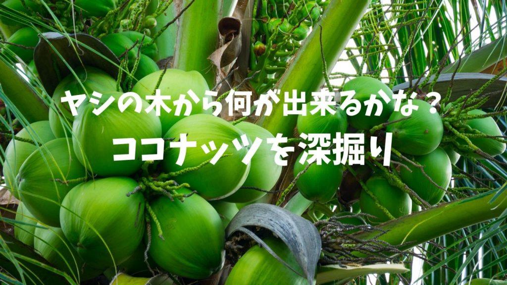 バリ島ココナッツについてのオンラインツアー