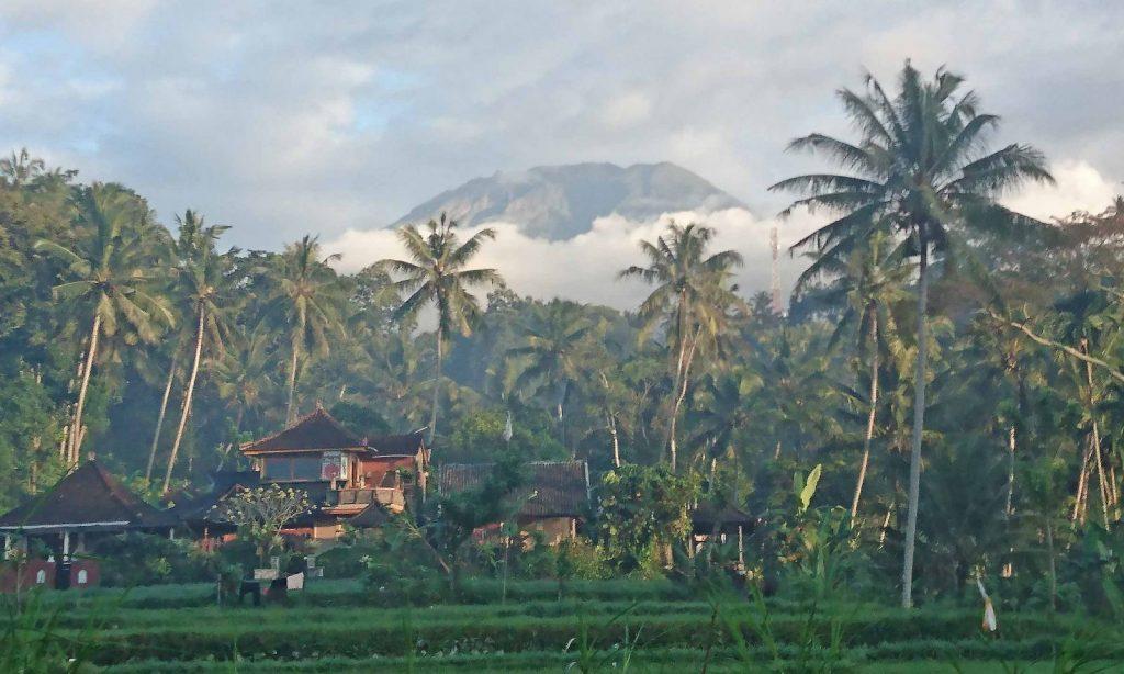 ティルタガンガ付近から見たアグン山