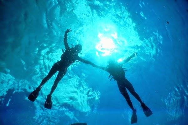バリ倶楽部の評価:レンボンガン島マングローブ&シュノーケル、お客様からの感想