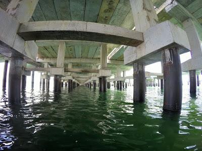 バリ島ブノア湾の埋立てと環境問題