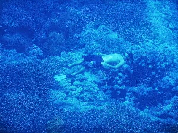 レンボンガン島で出会った海の中